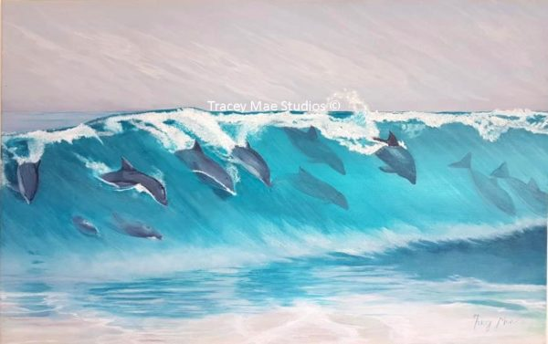 Surfing the Wave - Dolphins at play
